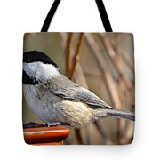 Hungry Chickadee  Tote Bag