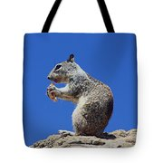 Hungry Ground Squirrel Tote Bag