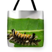 Hungry Hairy Caterpillar Tote Bag