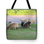 Hungry In Life  Tote Bag