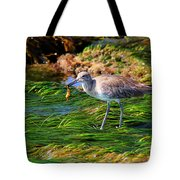 Hungry Willet Tote Bag