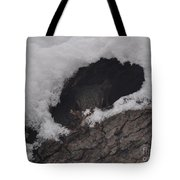 Hunkered Down For The Storm Tote Bag