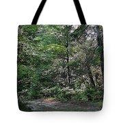 Hunter's Dam #2 Tote Bag