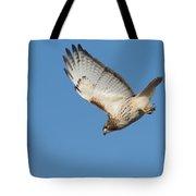 Hunting Hawk Tote Bag