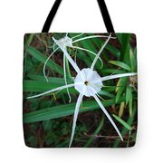 Hurricane Lilly Tote Bag