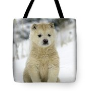 Husky Dog Puppy Tote Bag