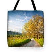 Hyatt Lane Cade's Cove Great Smoky Mountains National Park Tote Bag