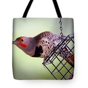 Intergrade Red Shafted And Yellow Shafted Northern Flicker Male Tote Bag