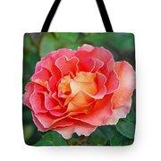 Hybrid Tea Rose  Tote Bag