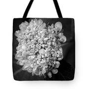 Hydrangea 3 Tote Bag