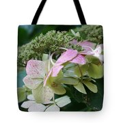 Hydrangea White And Pink I Tote Bag