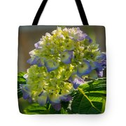 Hydrangeas First Blush Tote Bag