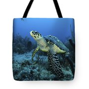 I Am A Proud Hawksbill Turtle Tote Bag
