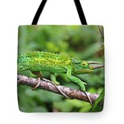 I Am Not A Pickle Tote Bag