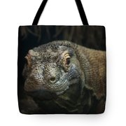 I Am Ready For My Close-up Tote Bag