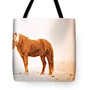 I Came Out Of Nothing To Meet You Here In Nomansland  Tote Bag