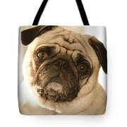 I Can Be Your Lovebug Tote Bag