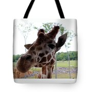 What's That You Say? Tote Bag