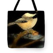 I Dream Of Winter Tote Bag