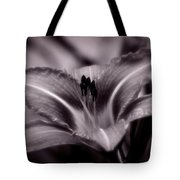 I Dream Of You Tote Bag