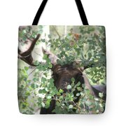 I Have Eyes For You Tote Bag