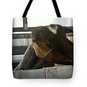 I Have My Eye On First Prize Goat Tote Bag