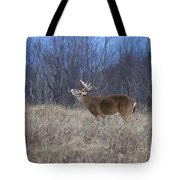 I Know You Are There Tote Bag