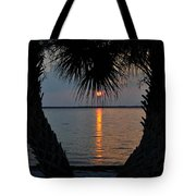 I Love Tampa Bay Tote Bag