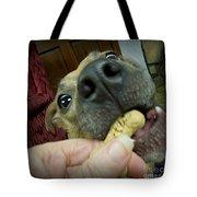 I Love Treats Tote Bag
