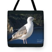 I Posed For You Now Feed Me Please Tote Bag