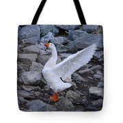 I Sing Your Praise Tote Bag