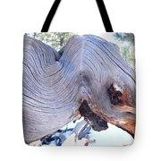 I Spy An Elephant Tote Bag