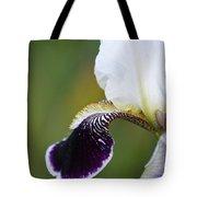 I Spy An Iris Tote Bag