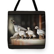 I Think I Can Fly  Tote Bag