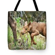 I Think I Can Tote Bag