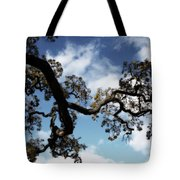 I Touch The Sky Tote Bag by Laurie Search