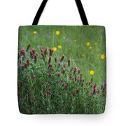 I55 Eye Candy Tote Bag