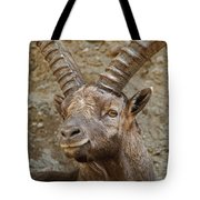 Ibex Pictures 40 Tote Bag