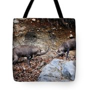 Ibex Pictures 134 Tote Bag