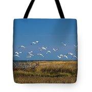 Ibis Flight Tote Bag