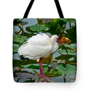 Ibis In Pond Tote Bag