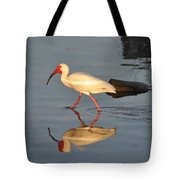 Ibis In Reflection Tote Bag