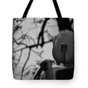 Ibis Stare Down Tote Bag