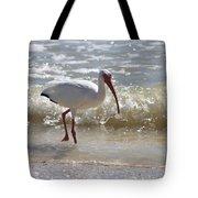 Ibis Walking The Beach Tote Bag