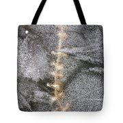 branch in ice - Madison - Wisconsin Tote Bag