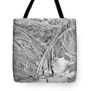 Ice Along Merced 1 Tote Bag