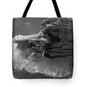 Ice Among The Floating Tree Tote Bag