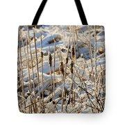 Ice Coated Bullrushes Tote Bag