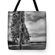Ice Coated Tree Tote Bag