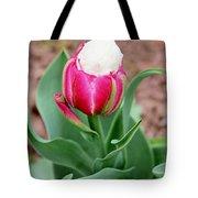 Ice Cream Parrot Tulip Tote Bag